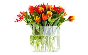 Фото Тюльпаны Много Вазы цветок