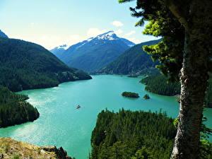 Фото Озеро США Горы Пейзаж Ствол дерева Сверху Washington Diablo Природа