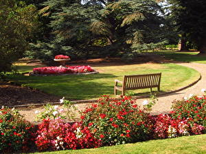 Обои Сады Англия Скамейка Beale Arboretum Barnet Природа