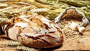 Картинка Выпечка Хлеб Пшеница Колос Еда