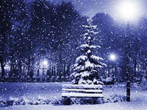 Картинка Времена года Зимние Ели Ночные Уличные фонари Снежинки Скамейка Природа