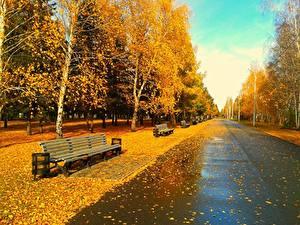 Картинки Парки Осень Скамья Природа