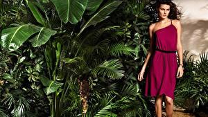 Фото Isabeli Fontana Тропический Платье