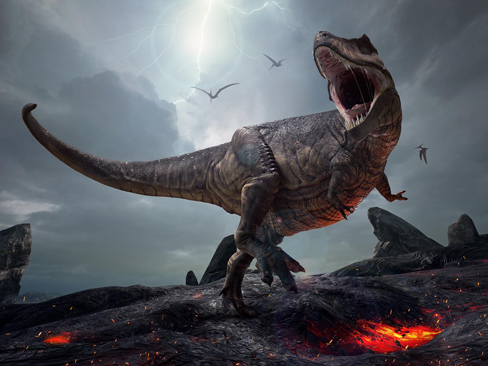 Фотография Тираннозавр рекс Динозавры 3д злость 1600x1200 динозавр 3D Графика злой Оскал рычит