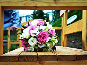 Картинка Розы Букеты Скамейка цветок