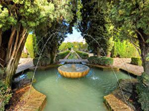 Фотография Испания Парки Фонтаны Дерева Кусты Granada Природа