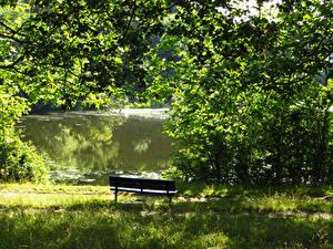 Фотография Англия Парки Пруд Лондон Скамейка Траве Hampstead Heath Природа