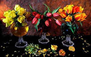 Фото Букеты Тюльпаны Лепестков Ваза цветок
