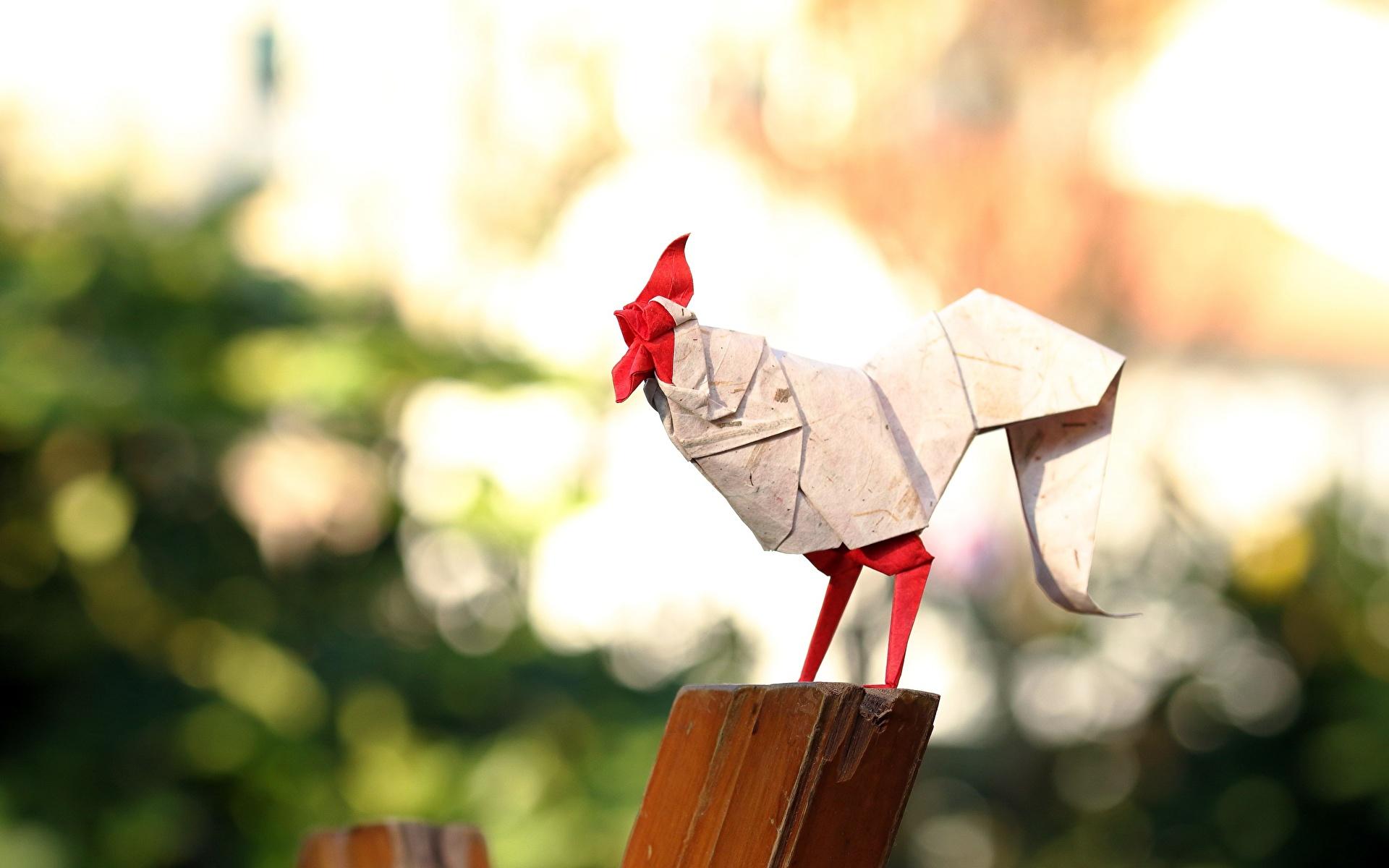 Обои для рабочего стола Петух Оригами бумаге Размытый фон 1920x1200 Бумага бумаги боке
