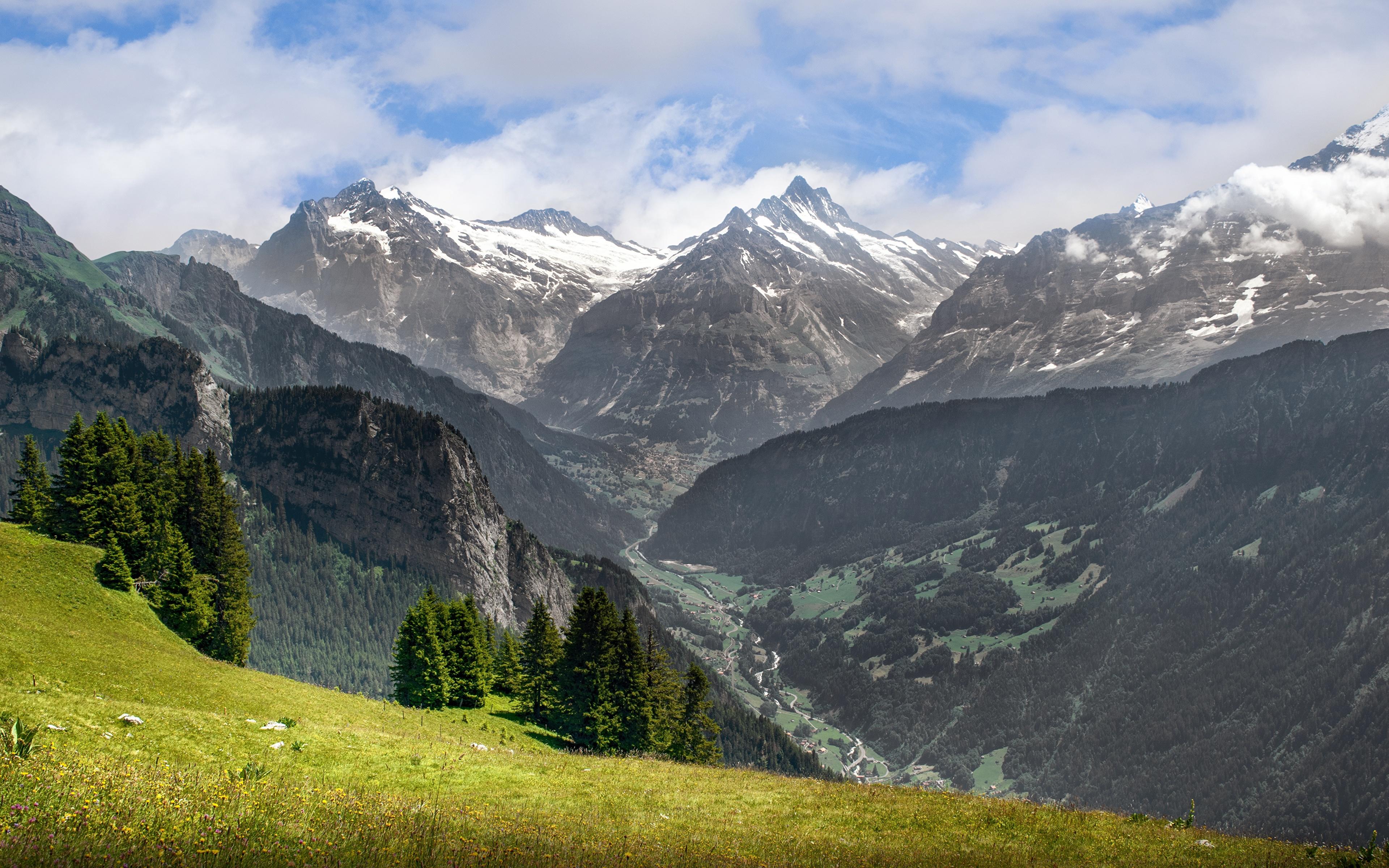 Обои швейцария, гора Нидерхорн, Mount Niederhorn, alps, Switzerland, альпы. Природа foto 7