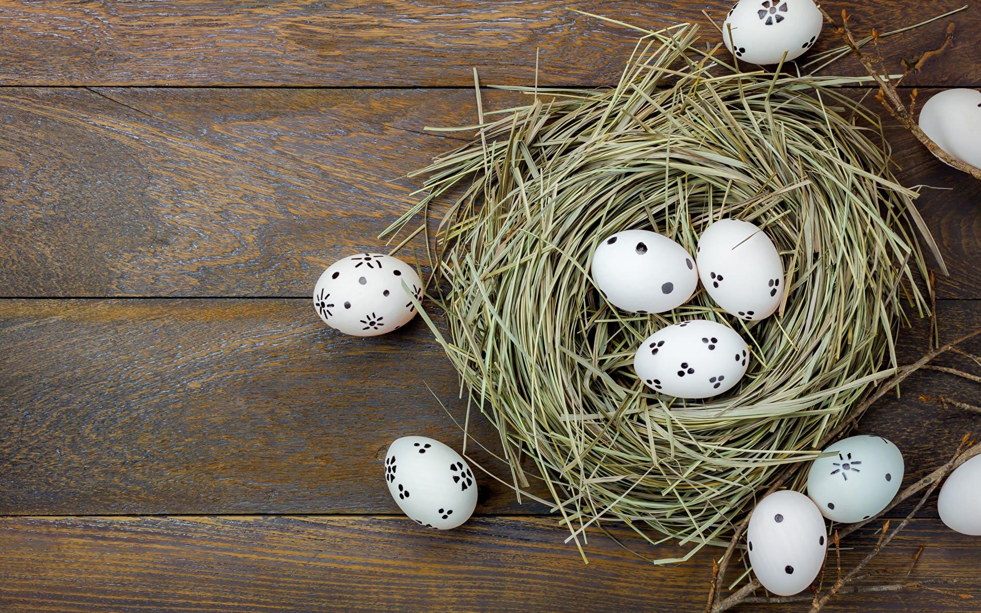 Фотография Пасха яиц гнезде Доски 1920x1200 яйцо Яйца яйцами гнезда Гнездо