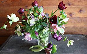 Фотографии Букеты Тюльпаны Морозник Вазе Цветы