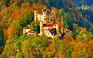 Обои Германия Замки Осень Нойшванштайн Дерева город
