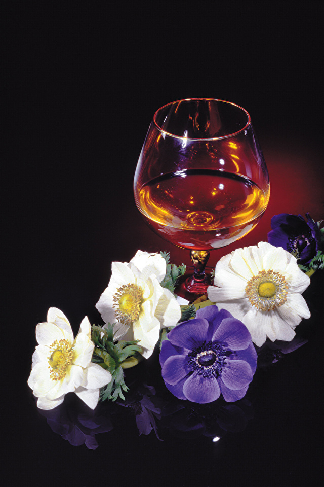Картинки Алкогольные напитки Цветы Пища Бокалы Ветреница Черный фон 640x960 для мобильного телефона цветок Еда бокал Анемоны Продукты питания на черном фоне