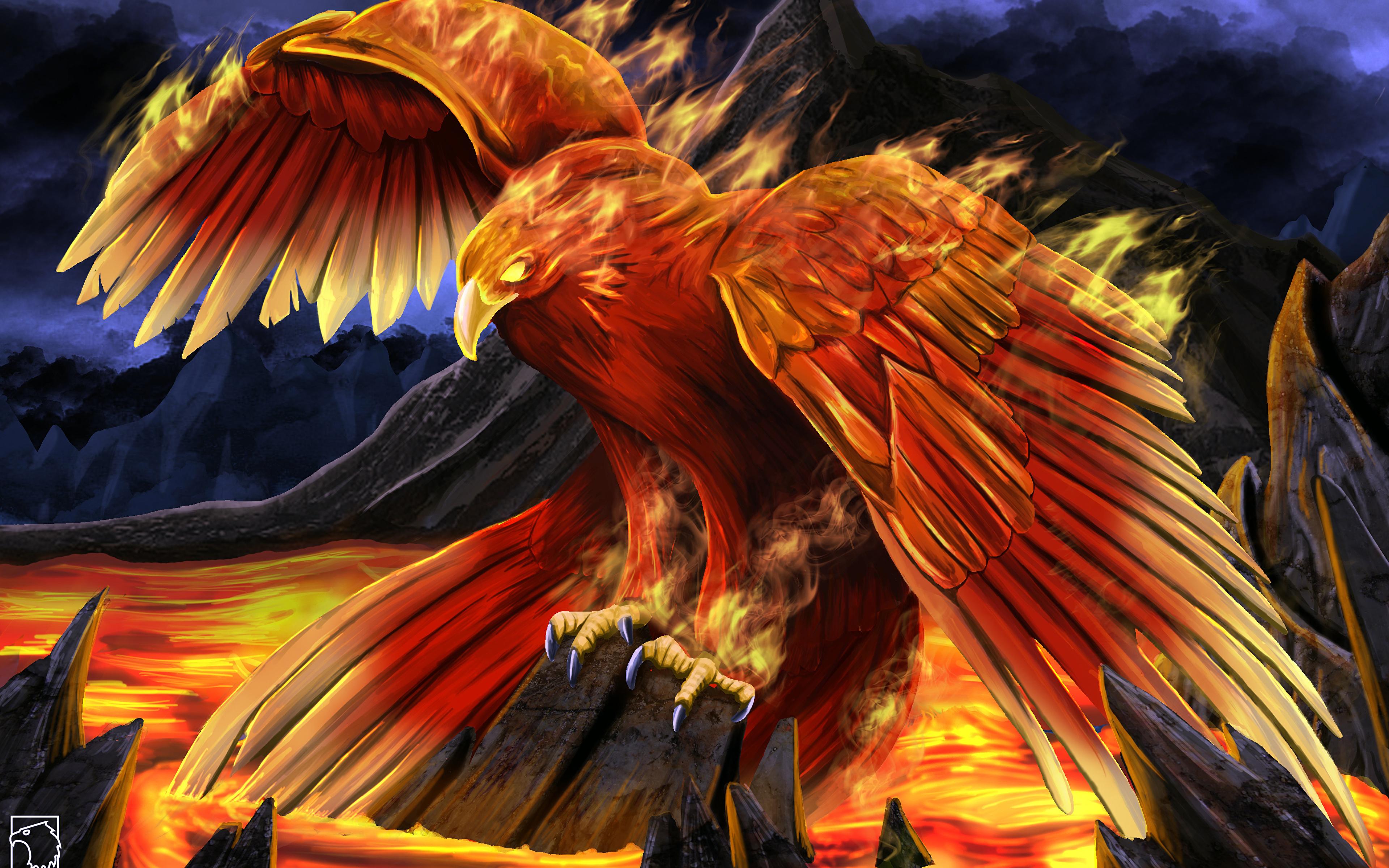 Обои крылья, феникс. Животные foto 16