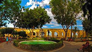 Фотография Мальта Парки Фонтаны Кусты Valletta Природа