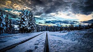Фото Времена года Зимние Пейзаж Железные дороги Снег Ель Облака Рельсы Природа