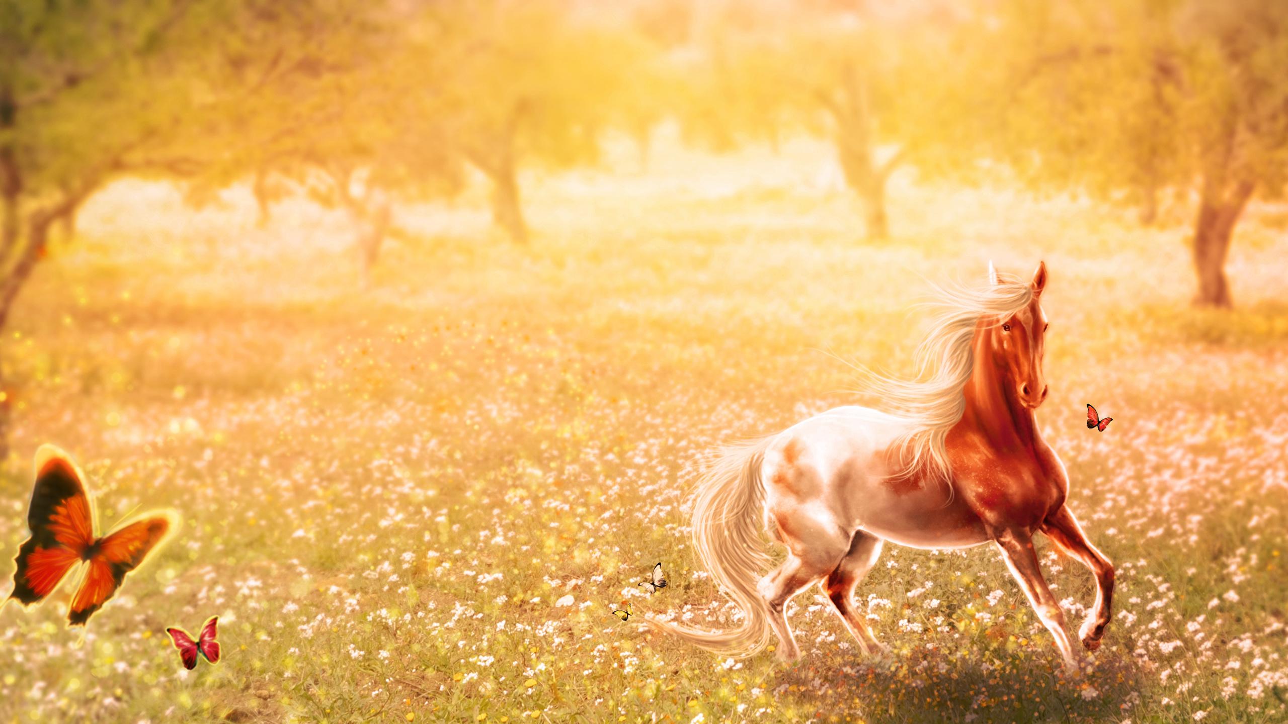 Коричневые лошади у дерева без смс