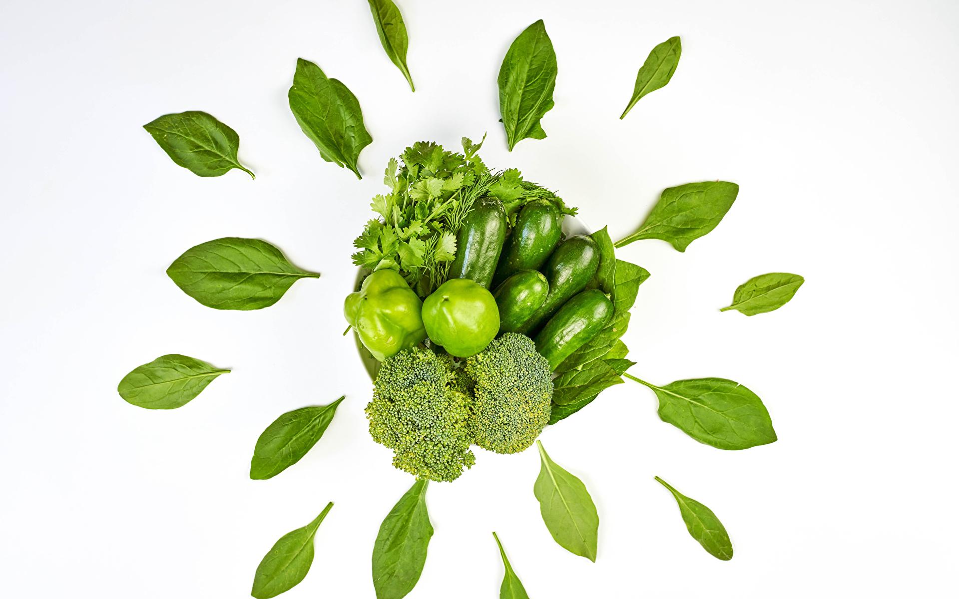 Фотография Листья parsley Огурцы Зеленый Брокколи Еда Овощи перец овощной Белый фон 1920x1200 лист Листва зеленая зеленые зеленых Пища Перец Продукты питания белом фоне белым фоном