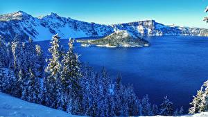 Обои США Парк Озеро Зимние Пейзаж Ель Снег Crater Lake National Park Природа