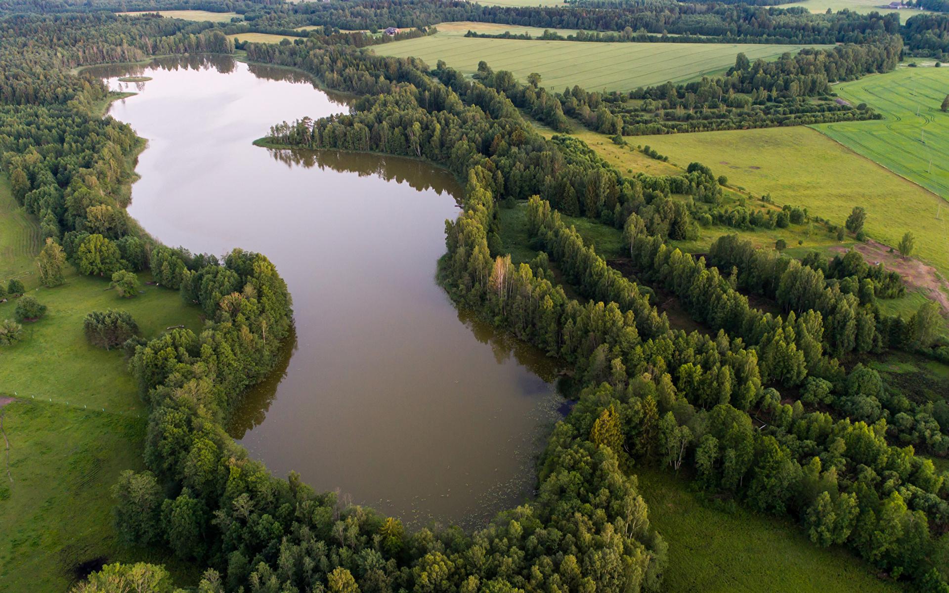 Фотографии Эстония Lake Kuuni Природа Леса Поля Озеро Сверху 1920x1200