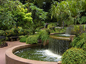 Фото Сингапур Парки Фонтаны Кустов Природа