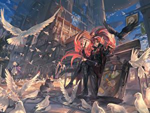 Обои Птицы Голуби Рисованные Улица Скамья pixiv fantasia, fallen kings Аниме Девушки