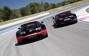 Фотография BUGATTI Двое Сзади Дорогие Родстер Veyron Grand Sport Roadster Vitesse WRC