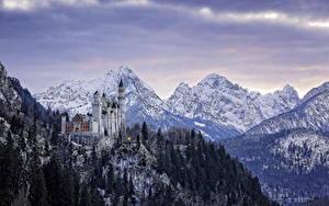Картинки Германия Замки Зимние Гора Леса Пейзаж Нойшванштайн Бавария