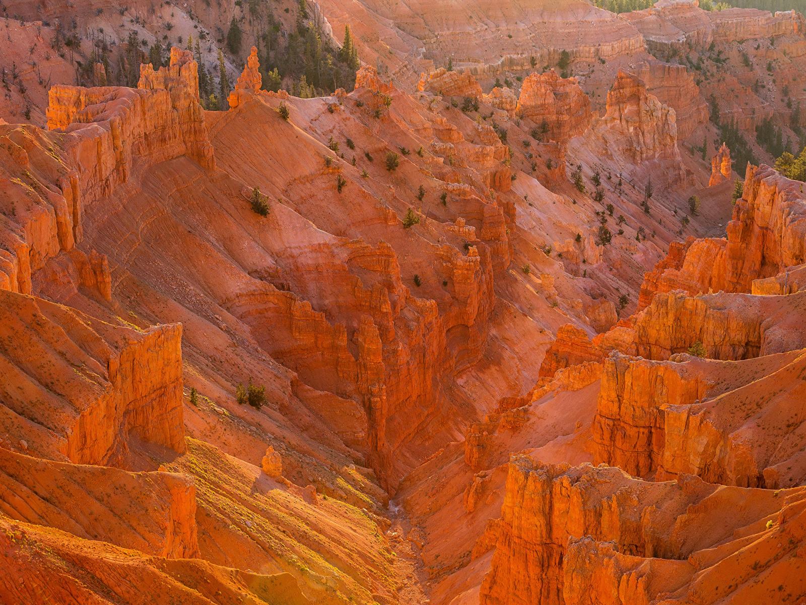 Картинка штаты Cedar Breaks National Monument Горы Природа парк 1600x1200 США америка гора Парки