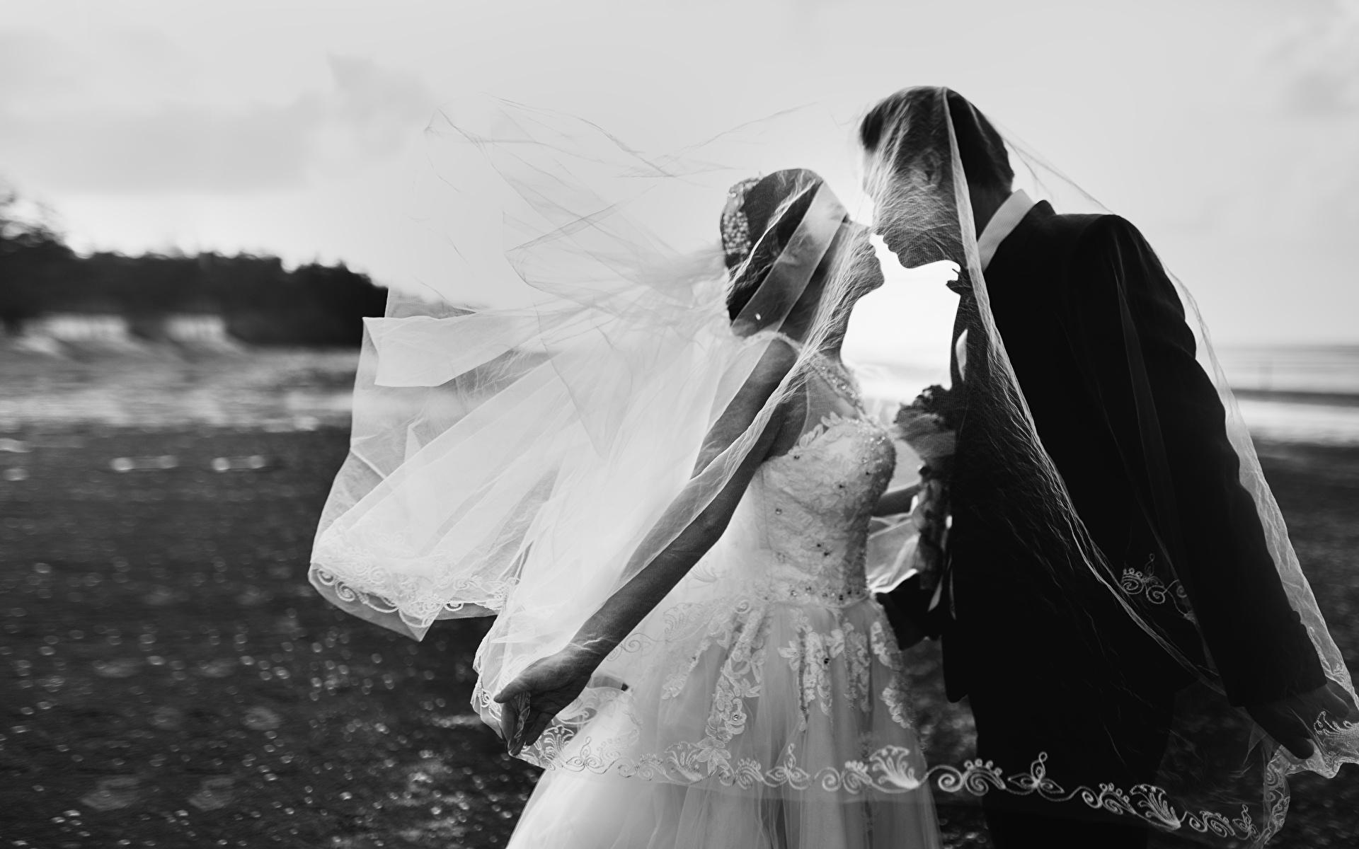 Фото Жених Невеста Свадьба Мужчины Поцелуй Любовь вдвоем Девушки Черно белое 1920x1200 2 Двое