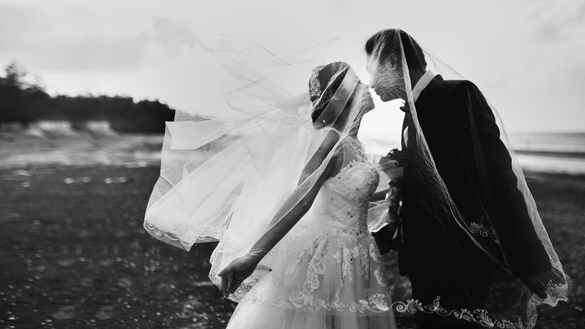 Фото Жених Невеста Свадьба Мужчины Поцелуй Любовь вдвоем Девушки Черно белое 2048x1152 2 Двое