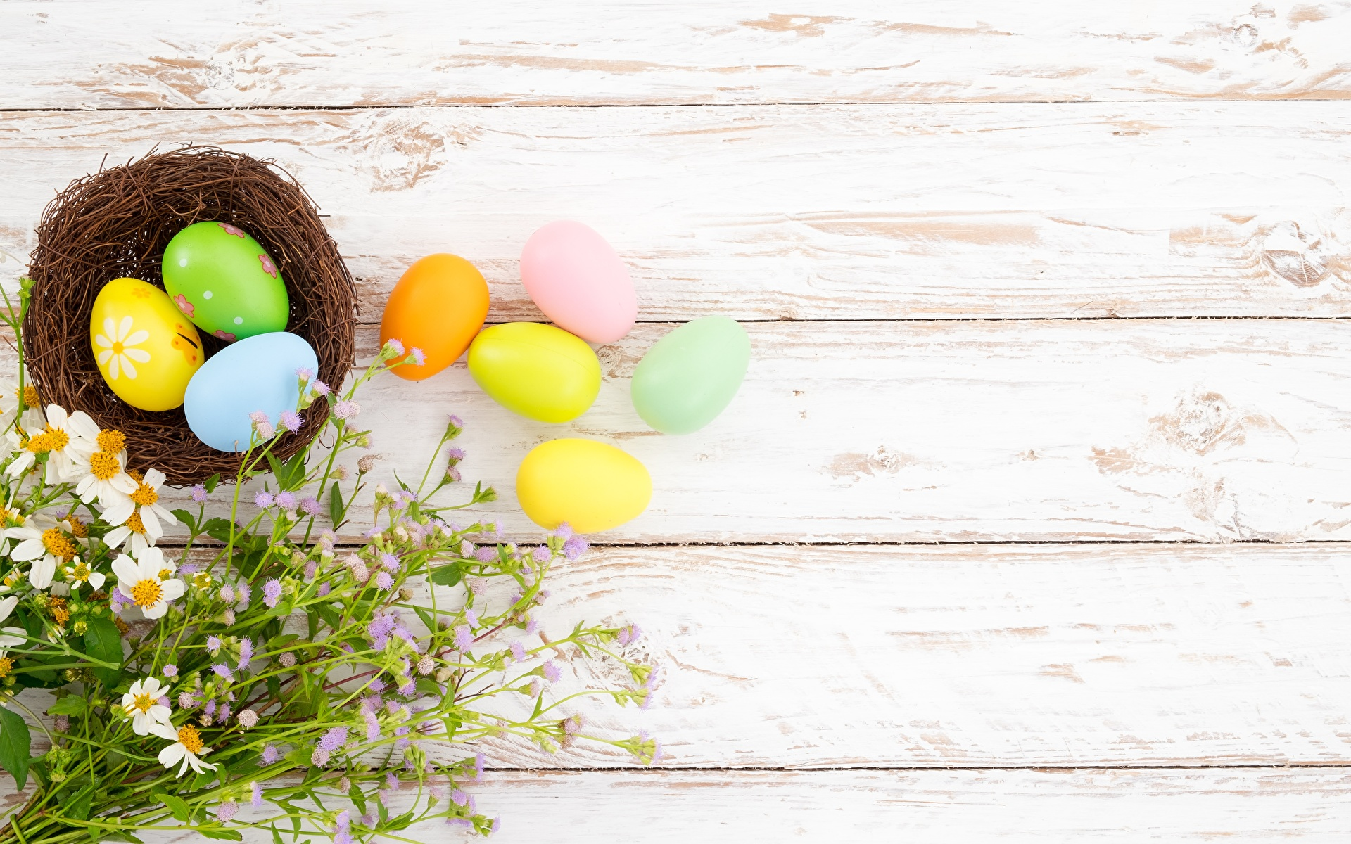 Картинки Пасха яйцо гнезда Шаблон поздравительной открытки Доски 1920x1200 яиц Яйца яйцами Гнездо гнезде
