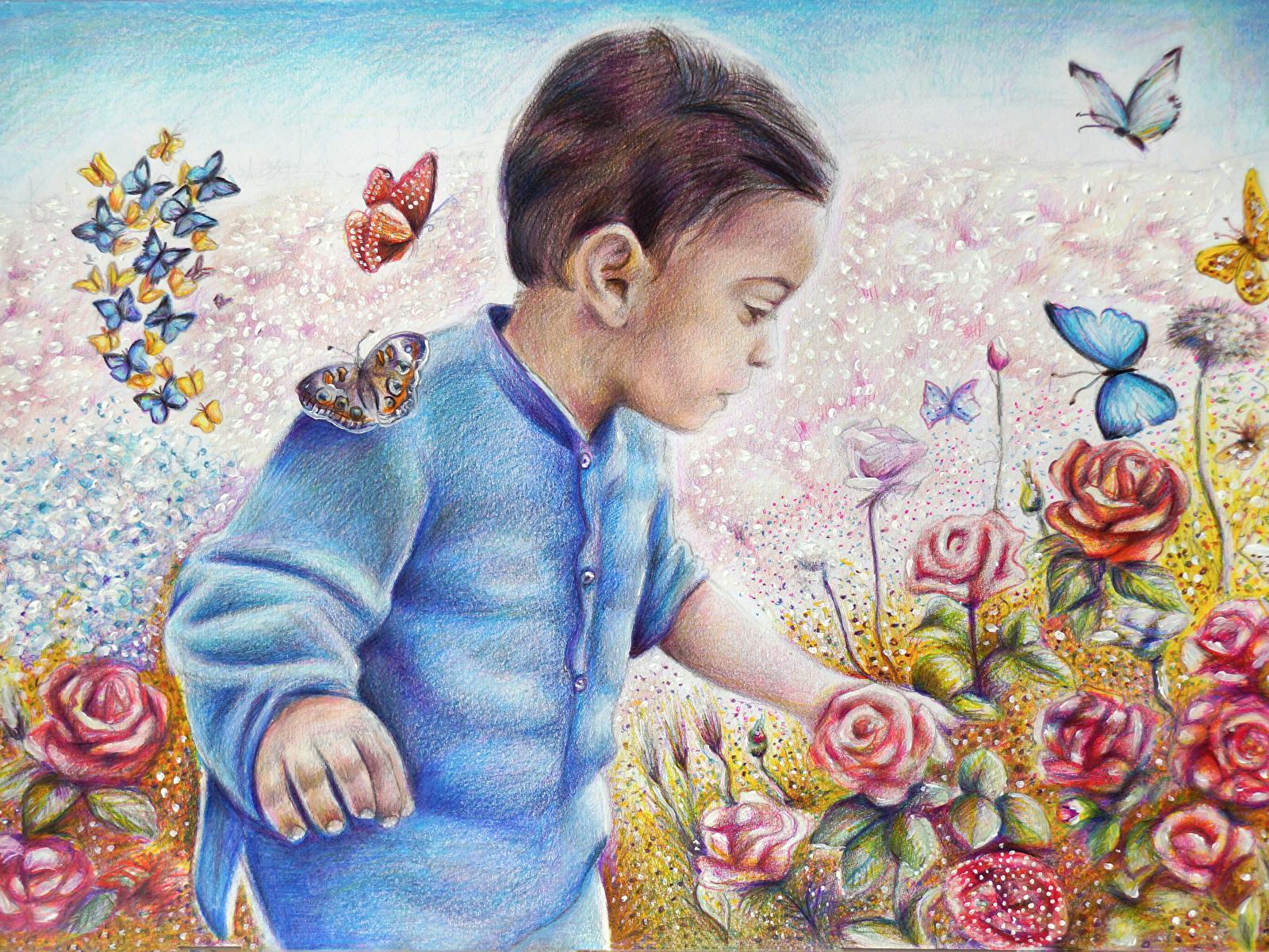 Фотография бабочка Мальчики ребёнок Розы Рисованные 1600x1200 Бабочки мальчик мальчишка мальчишки Дети роза