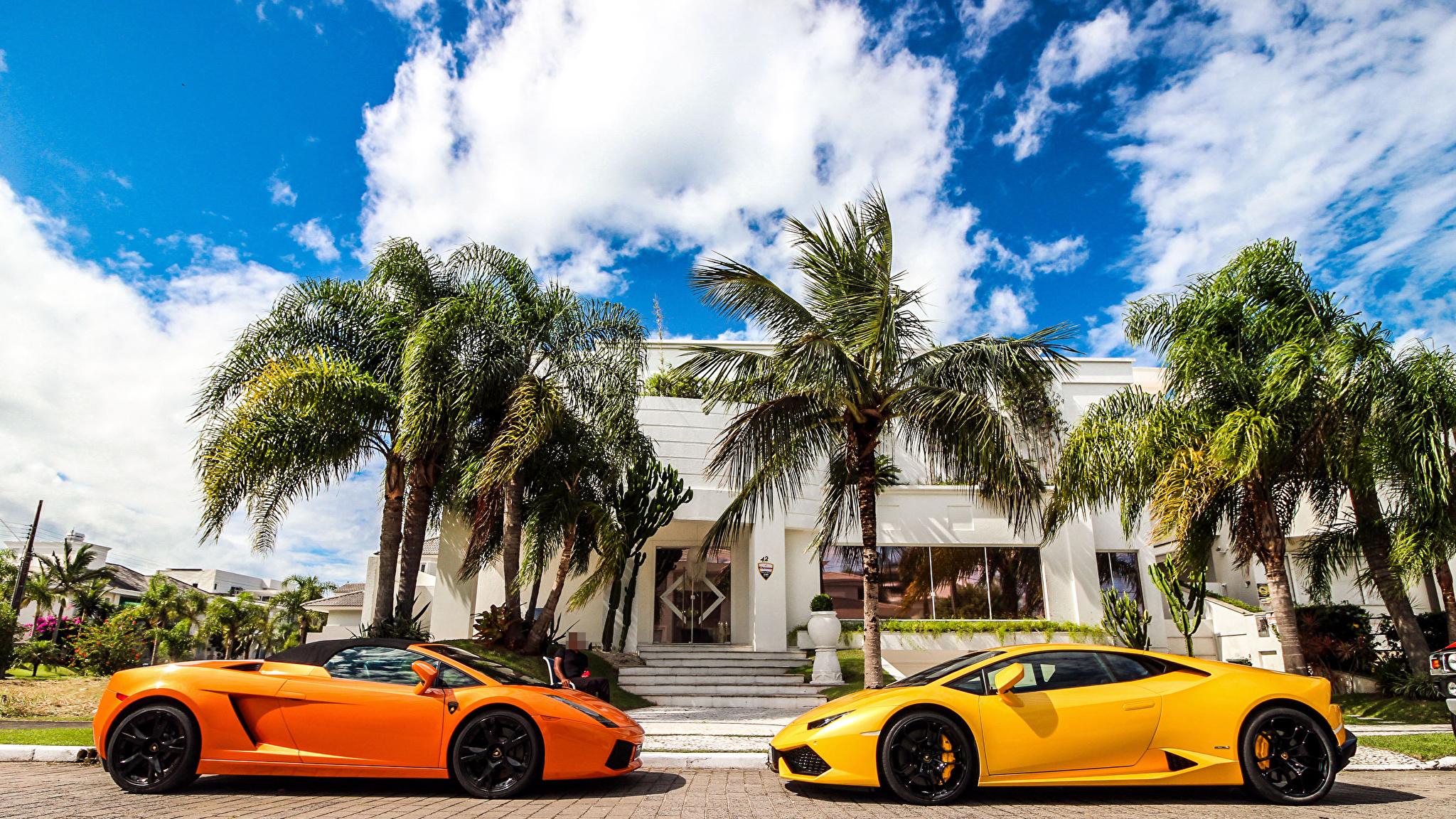 Lamborghini Huracan газон коттедж пальмы без смс