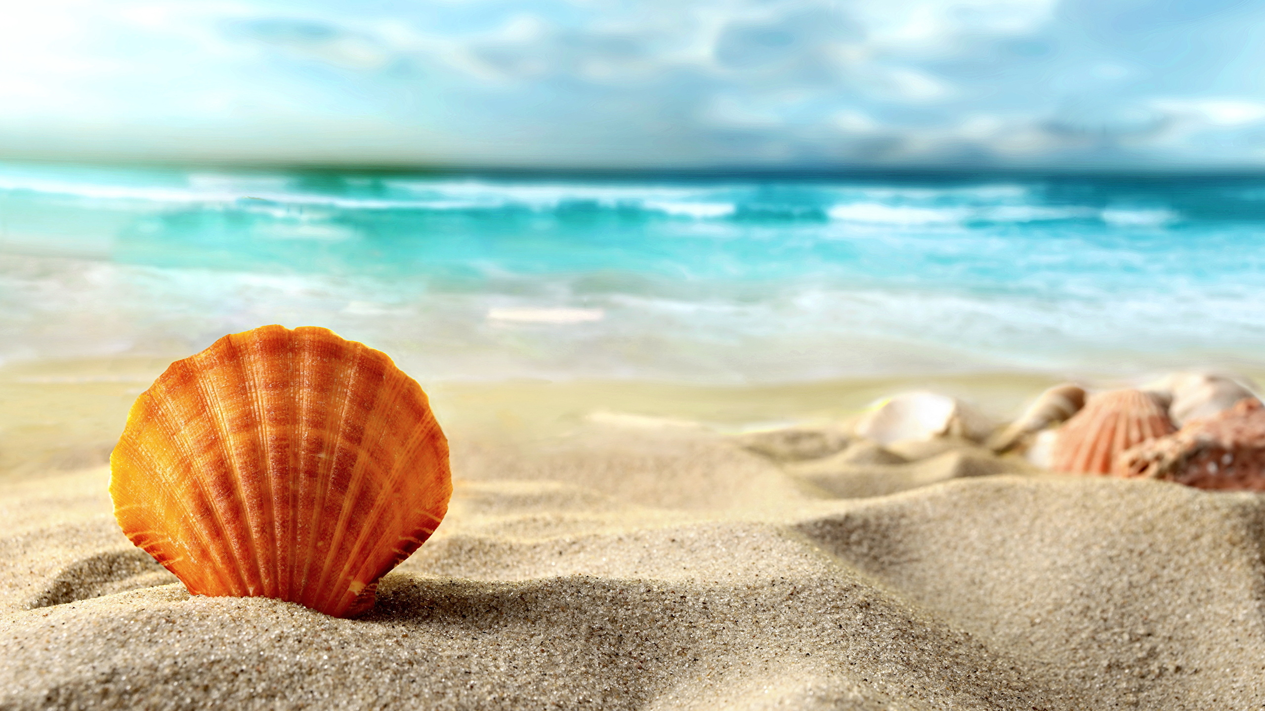 Картинки по запросу море песок пляж