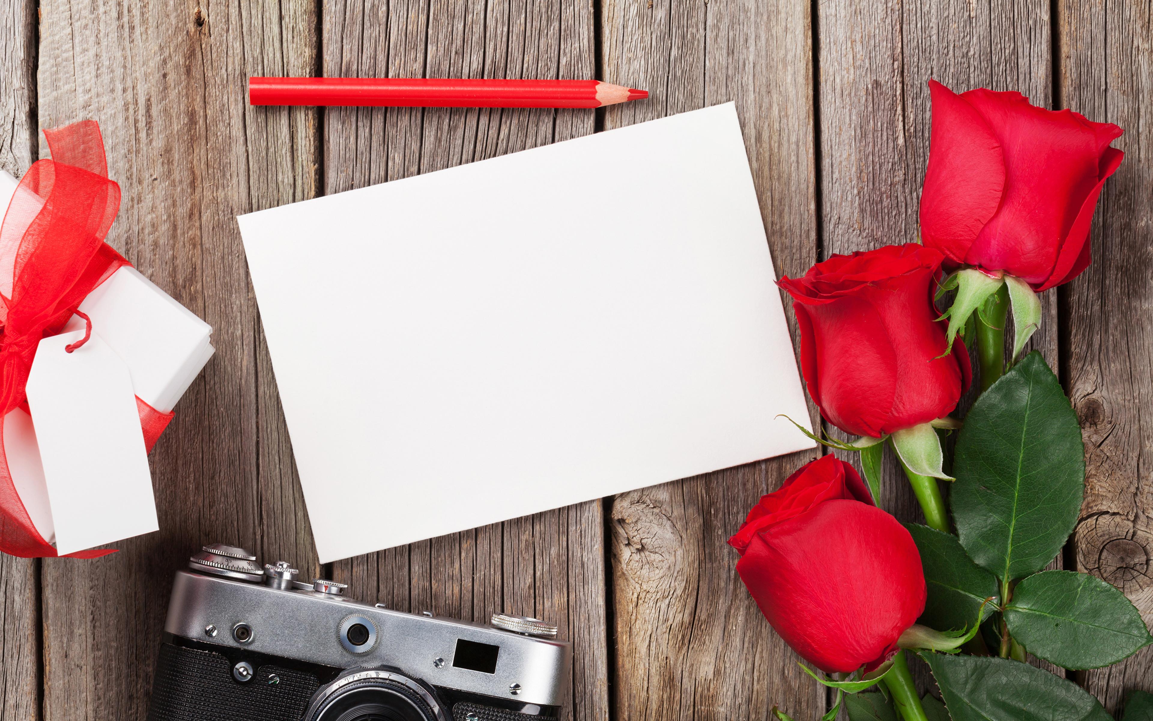 Обои для рабочего стола карандаш Лист бумаги Розы цветок втроем Шаблон поздравительной открытки Праздники Доски 3840x2400 Карандаши карандаша карандашей роза Цветы три Трое 3