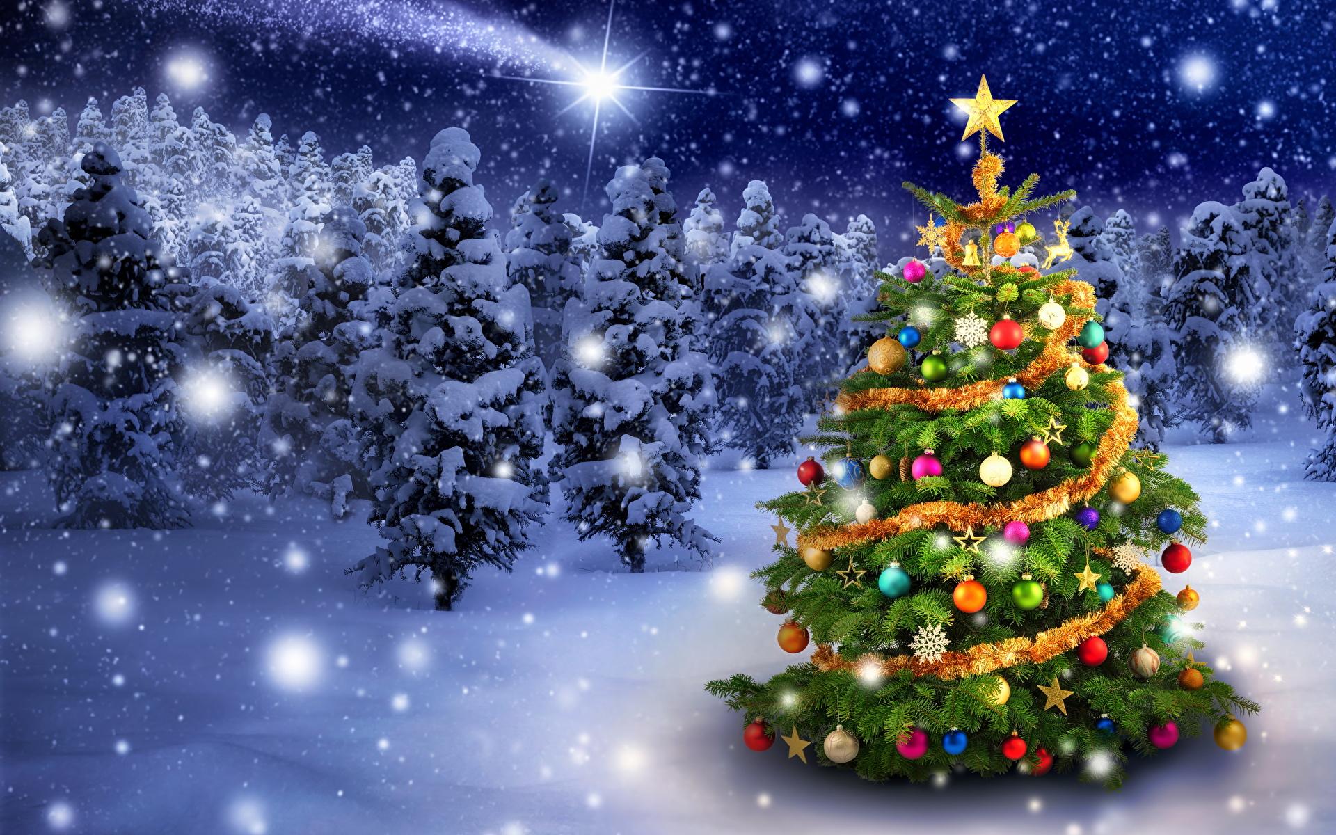 https://s1.1zoom.ru/b5050/547/Christmas_Christmas_tree_466769_1920x1200.jpg