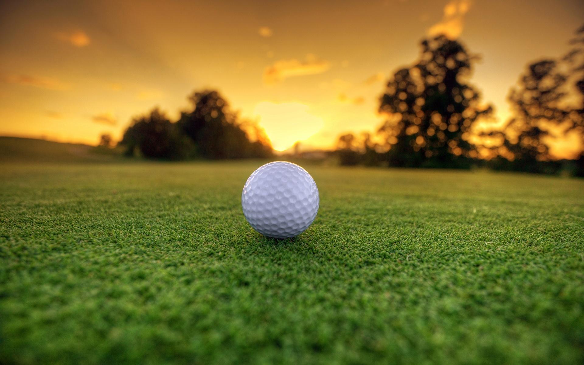 Мяч от гольфа на земле без смс