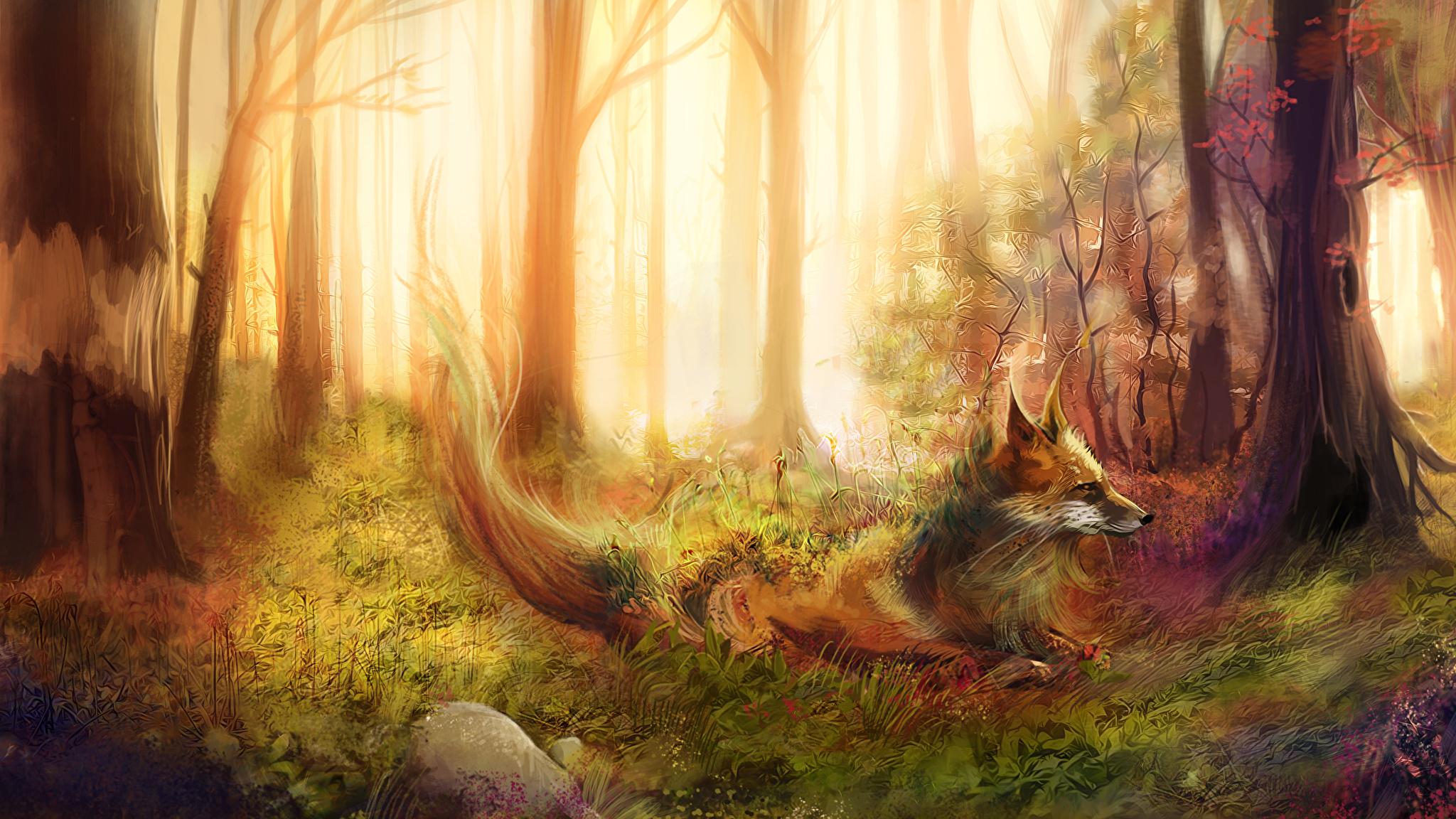 две лисы трава лес без регистрации