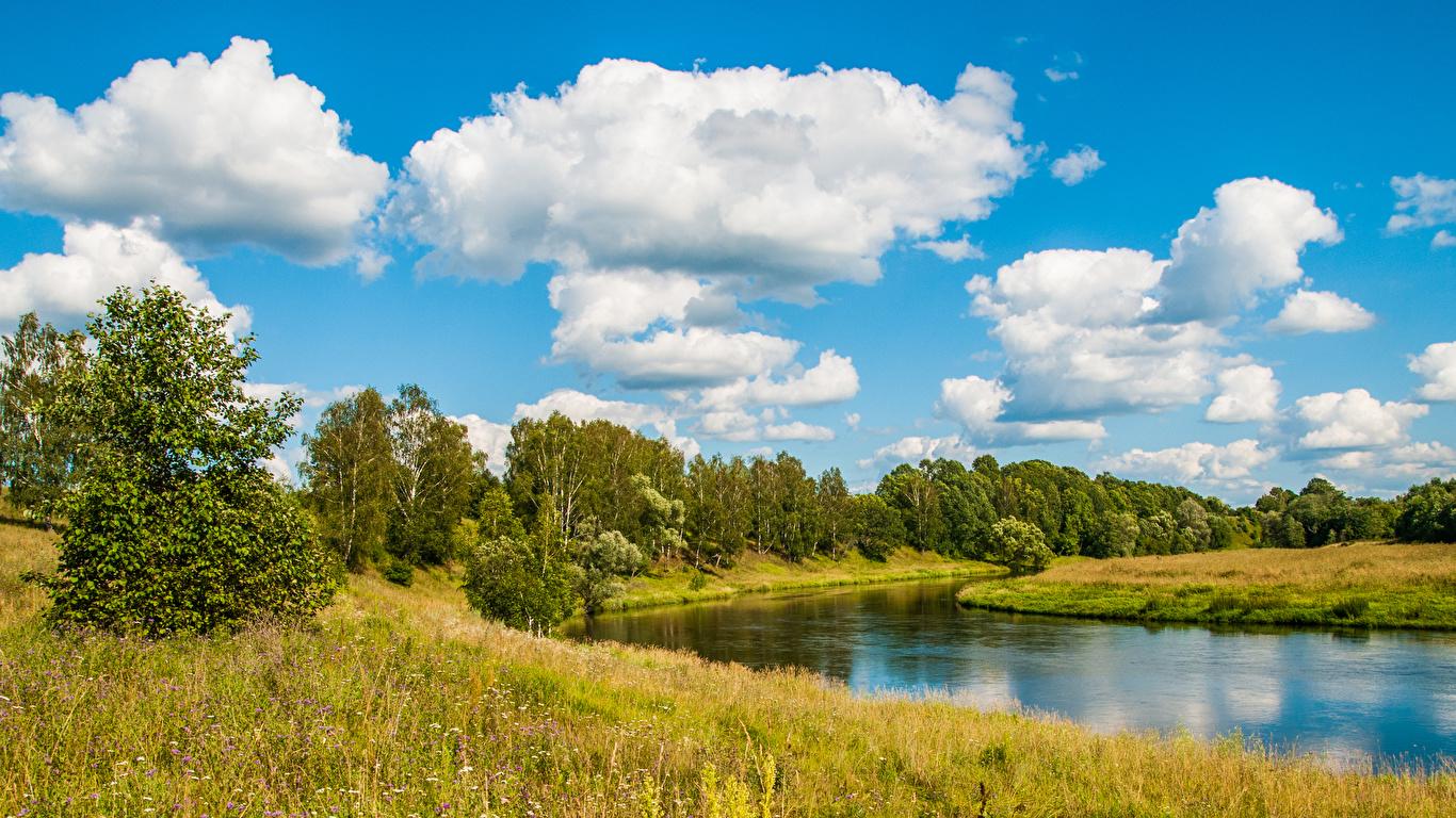 Фотография Россия Moscow river Природа Небо Реки траве дерево Облака 1366x768 Трава речка облако дерева Деревья облачно деревьев