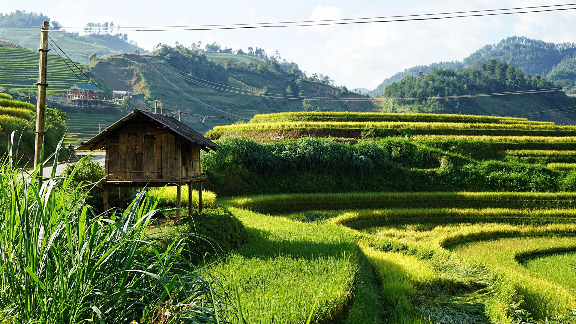 Обои для рабочего стола Вьетнам Sapa Природа Поля холмов 1920x1080 холм Холмы
