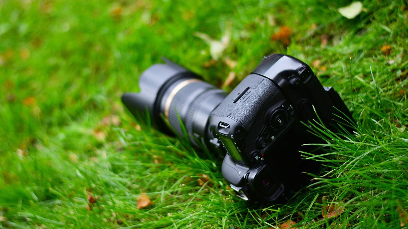 Фотография фотокамера боке траве вблизи 1366x768 Фотоаппарат Размытый фон Трава Крупным планом