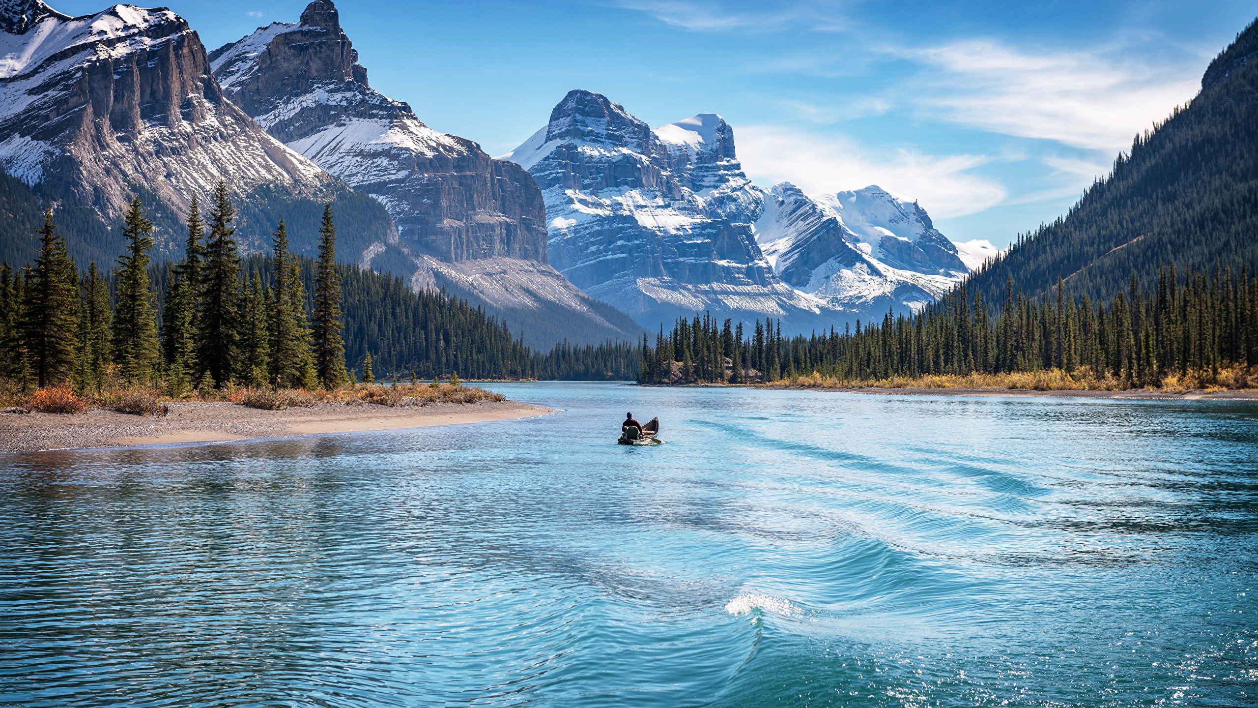 Картинка Джаспер парк Канада Lake Maligne, Alberta гора Природа парк Озеро Пейзаж Лодки деревьев 2560x1440 Горы Парки дерево дерева Деревья