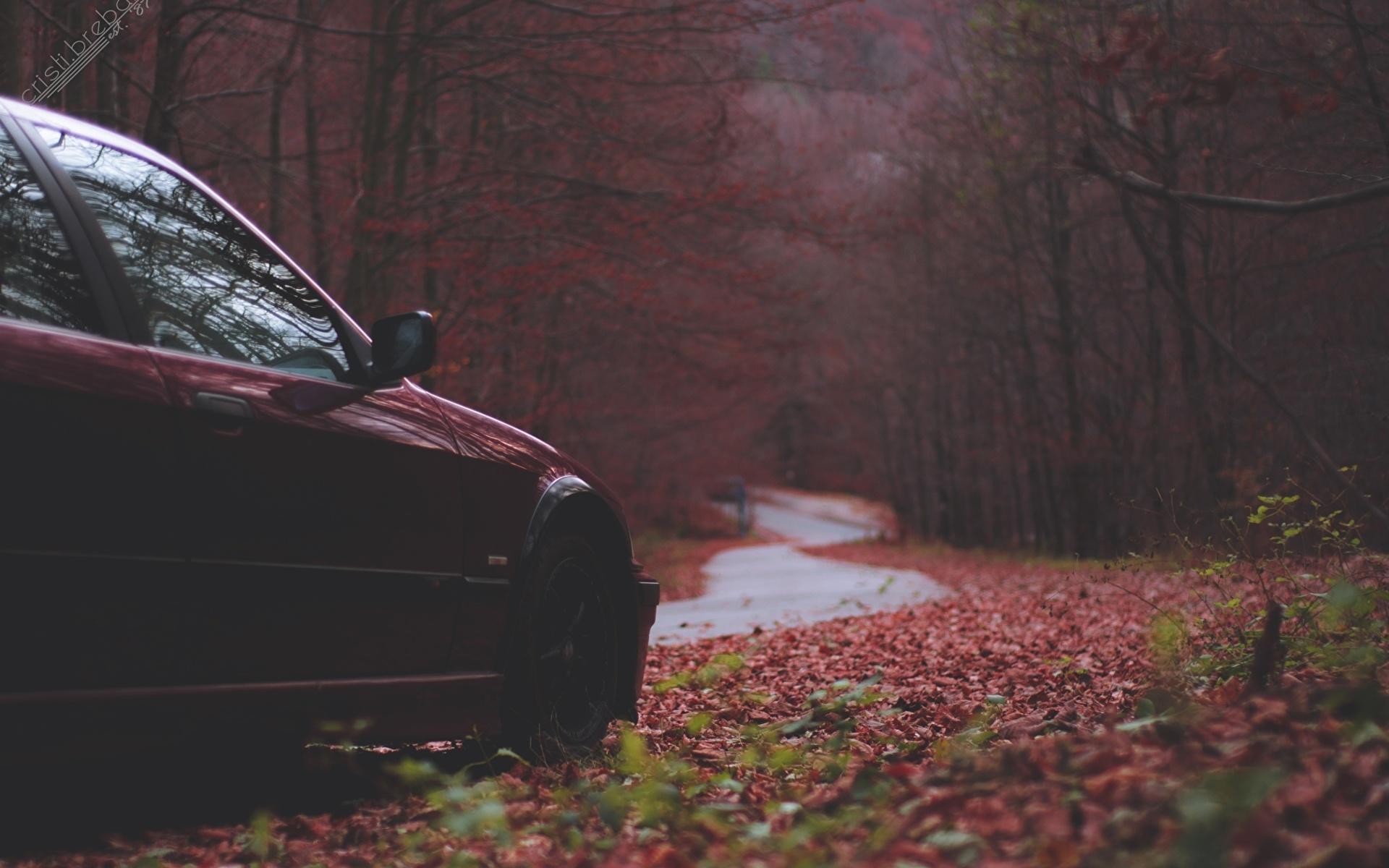 Фотография БМВ E36 Осень Природа Автомобили 1920x1200 BMW осенние авто машины машина автомобиль