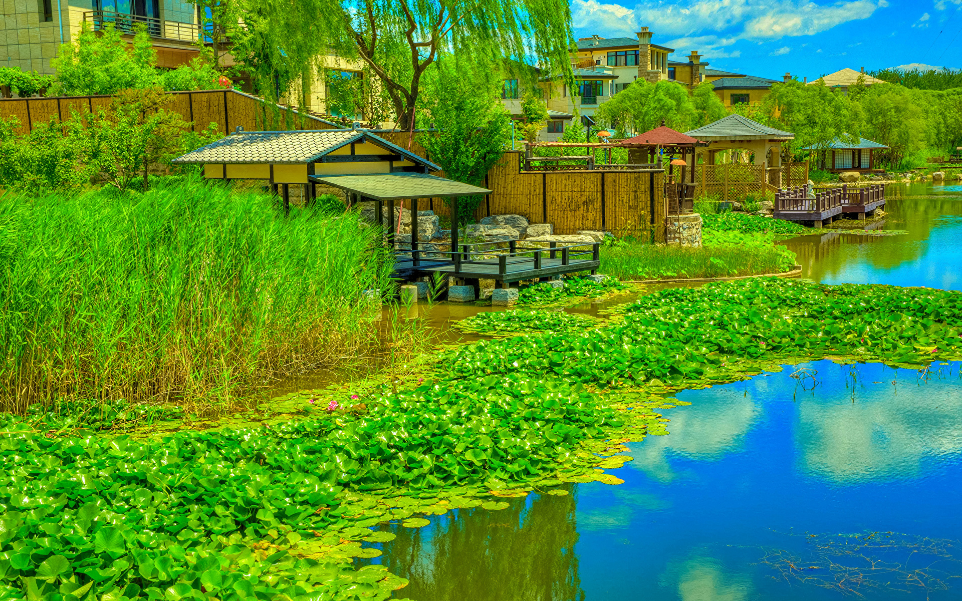 Фото Китай Beijing Zen Garden HDR Природа парк Водяные лилии речка Пристань 1920x1200 HDRI Парки Кувшинки Реки река Пирсы Причалы