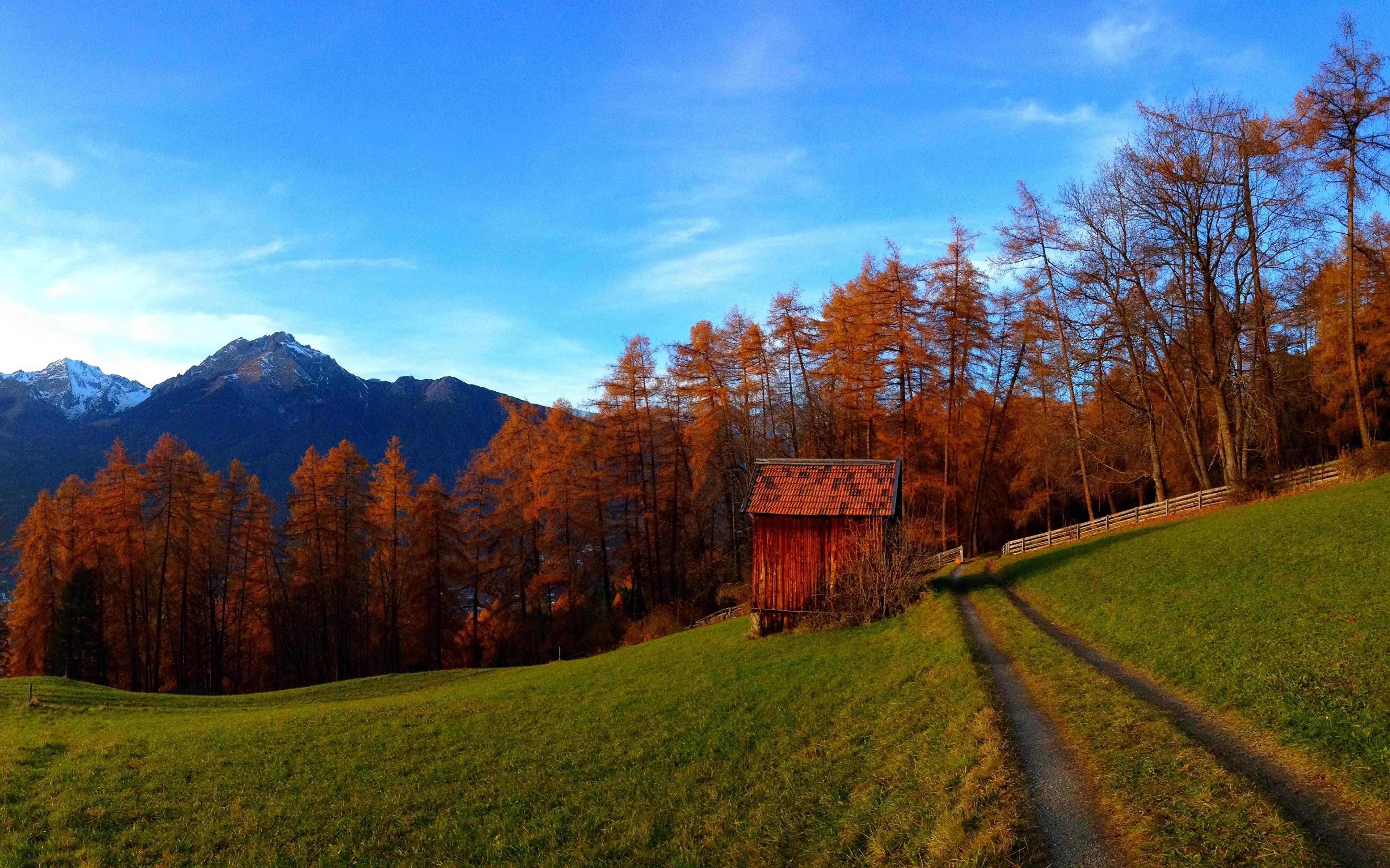дорога осенний лес небо загрузить