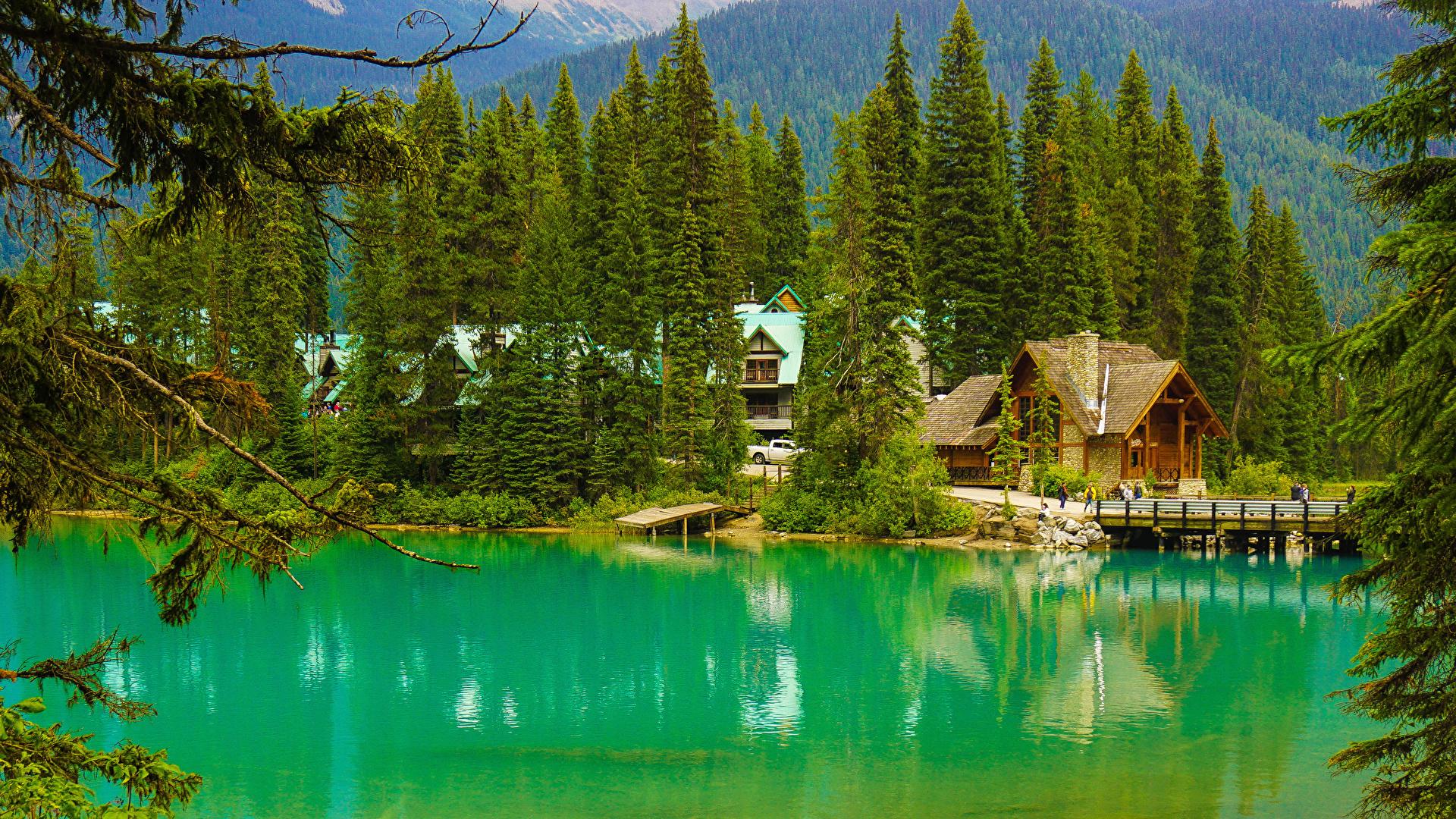 Фото Канада Yoho National Park Alberta Ель Мосты Природа Леса Озеро Парки Пристань Здания 1920x1080 Пирсы Причалы Дома