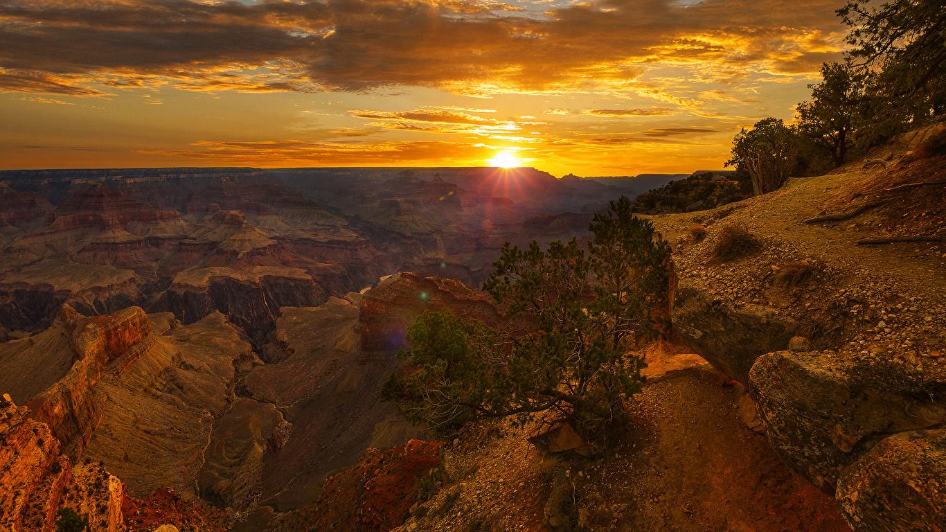 Фотографии Гранд-Каньон парк америка скале Природа каньоны парк Рассветы и закаты кустов 1366x768 США штаты Утес скалы Скала Каньон каньона Парки рассвет и закат Кусты