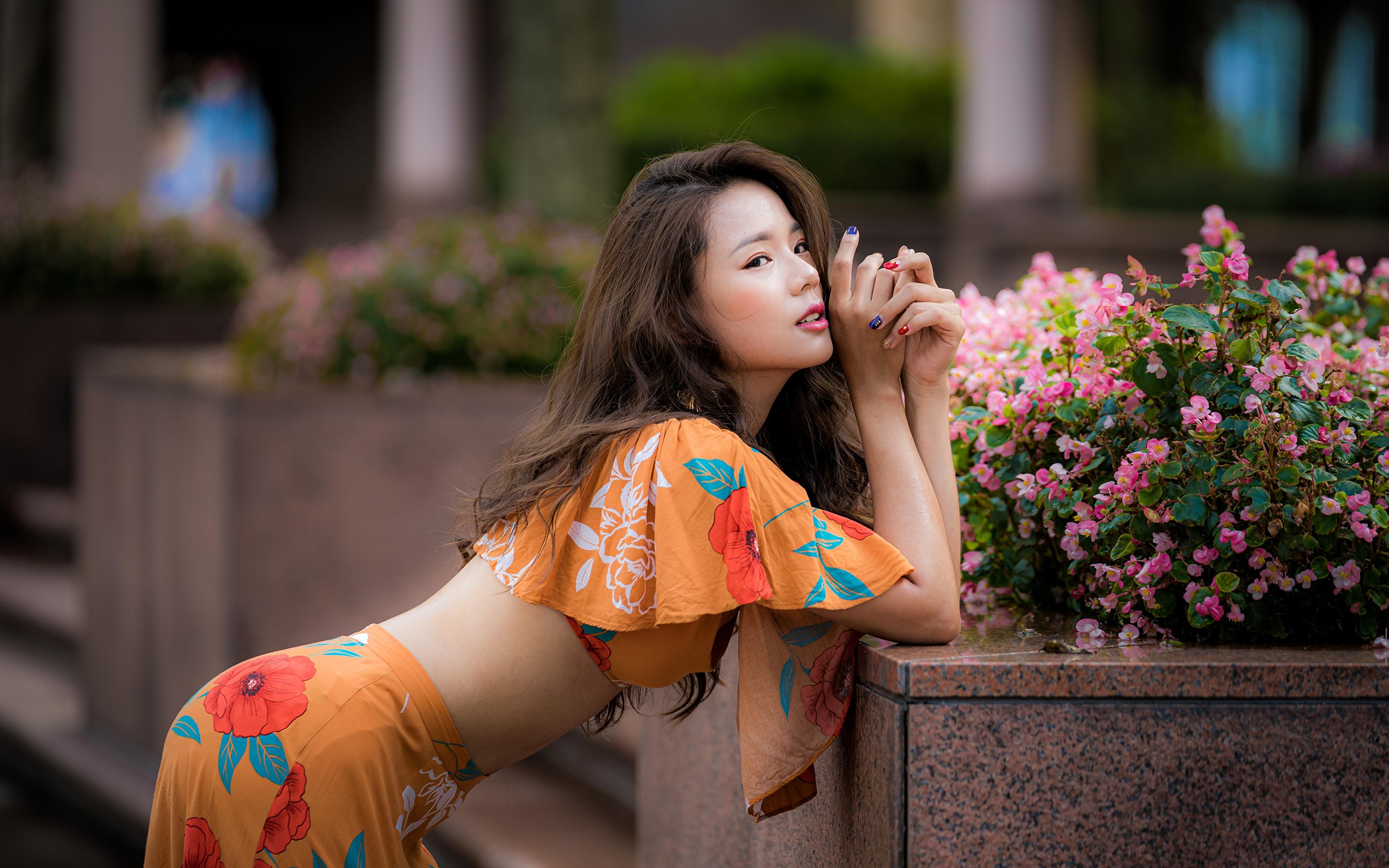 Картинка Шатенка Размытый фон Милые позирует молодые женщины азиатки 3840x2400 шатенки боке Поза милый милая Миленькие девушка Девушки молодая женщина Азиаты азиатка